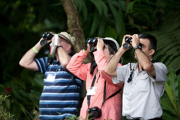 Costa Rica Birding Adventure tour 2018